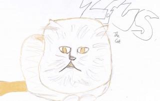 Zeus the Cat