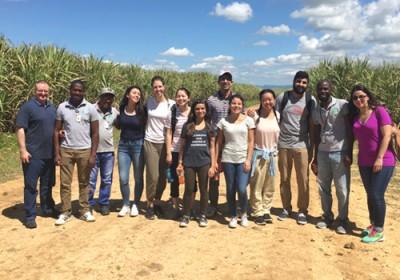 Team photo in the sugarcane fields.