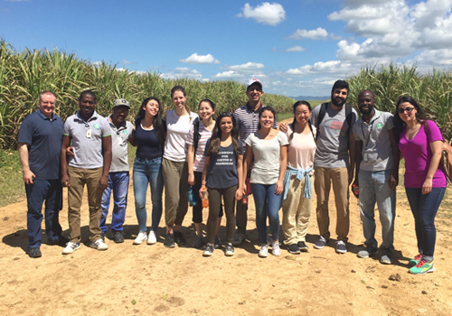 Team photo in the sugarcane fields.