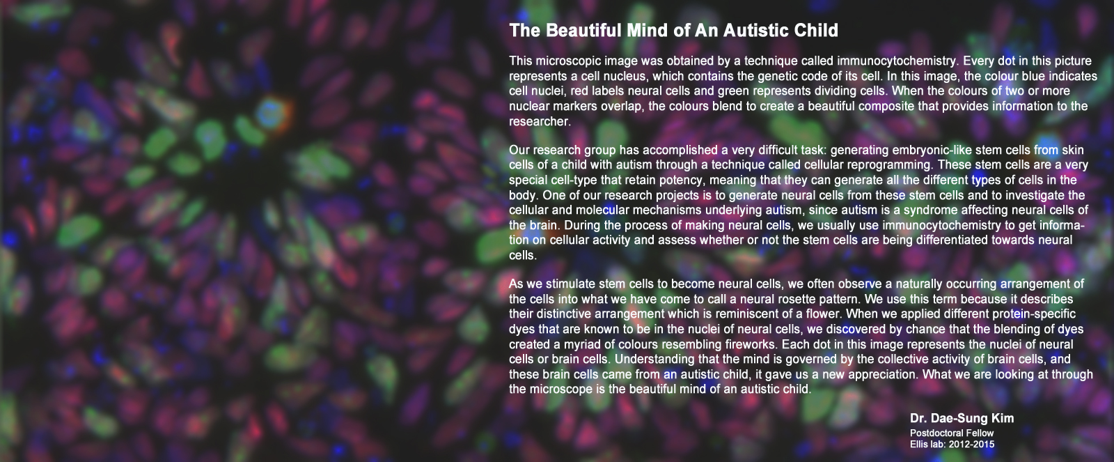 Beautiful mind of an autistic child