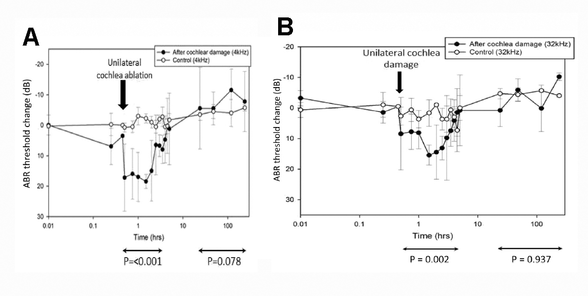Graphs showing injury discharge after unilteral cochlea damage.