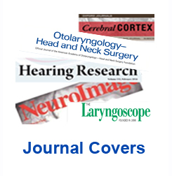 Link to the journal covers page