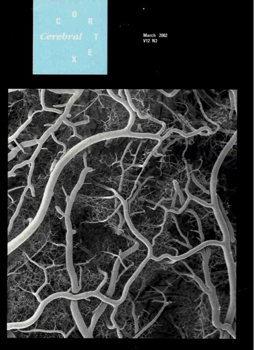 cortec vessels on cover of journal