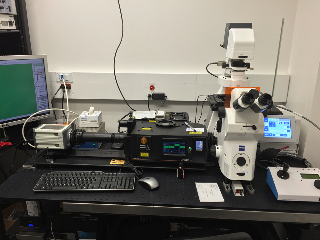 Spinning Disc Confocal for Live Imaging