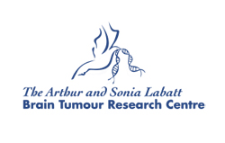 Click here to visit the Brain Tumour Research Centre website