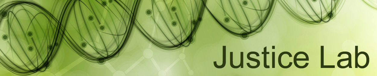 Justice lab banner