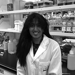 Sanjana Srikant