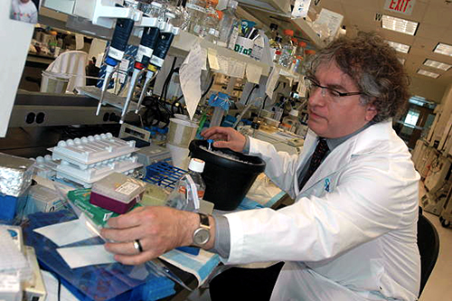 Dr. Kaplan at the bench (Photo by Paul Irish/Toronto Star via Getty Images)