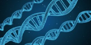 Image of DNA