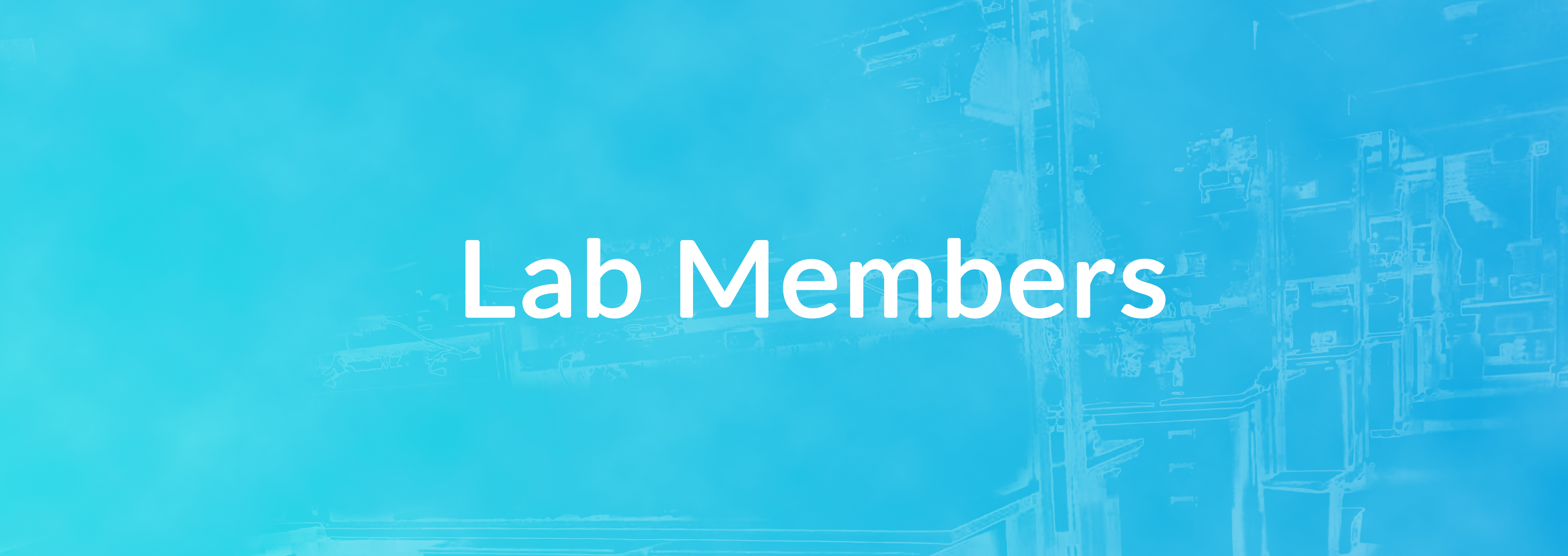 Button of Lab Members Tab